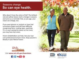 image tagged with nih, national eye health education program, nei, write the vision, infographic, …;